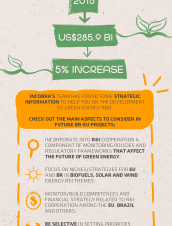 EU-BR STI COOPERATION PRIORITIES - GREEN ENERGY
